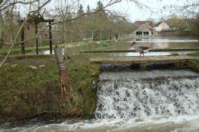 Visite Libre Du Moulin De La Folletière à Joue du Plain