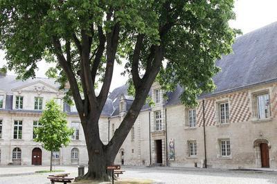 Visite Libre Du Musée D'art Moderne à Troyes