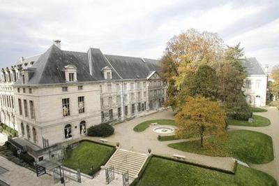 Visite Libre Du Musée Des Beaux-arts Et D'archéologie, Museum D'histoire Naturelle à Troyes