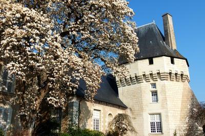 Visite Libre Du Musée Des Coiffes Et Des Traditions à Les Ponts de Ce