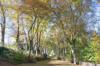 Visite Libre Du Parc à Pontoise