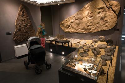 Visite Libre Du Parcours De Référence Du Musée à Millau