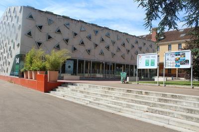 Visite Libre Du Silex à Auxerre