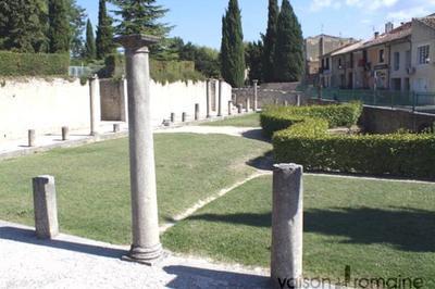 Visite Libre Du Site Antique De Puymin à Vaison la Romaine
