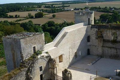 Visite Libre Ou Commentée Du Château-fort Des Comtes De Nevers Et D'auxerre à Druyes les Belles Fontain