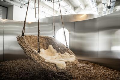 Visite Racontée De L'exposition « Places To Be » à Cognac
