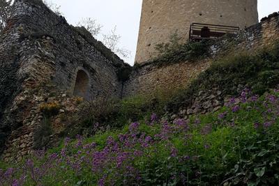 Visite Sensorielle De La Cité Médiévale D'aurignac à Aurignac