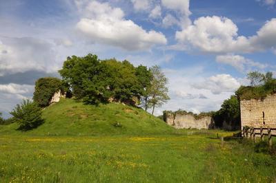 Visite Uniquement Accompagnée Et Commentée Des Ruines Du Château Fort à Bommiers