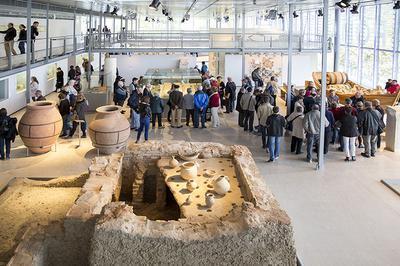 Visites Commentées Des Objets De La Collection à Saint Romain en Gal