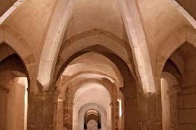 Visites De L'abbaye Saint-germain D'auxerre à Auxerre