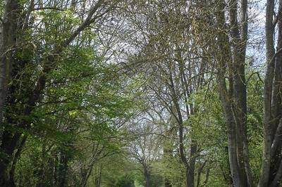 Visites Du Bocage De Noirlac à Bruere Allichamps