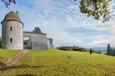 Visites Flash Du Château De Ray-sur-saône à Ray sur Saone