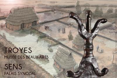 Les Sénons - Archéologie et Histoire d'un peuple gaulois à Sens