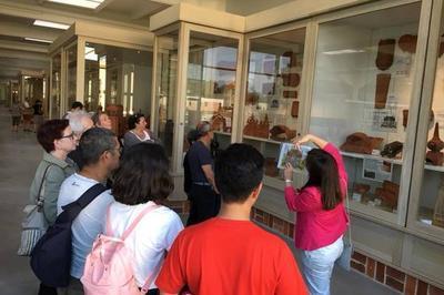Visites Guidées De La Collection à Romorantin Lanthenay