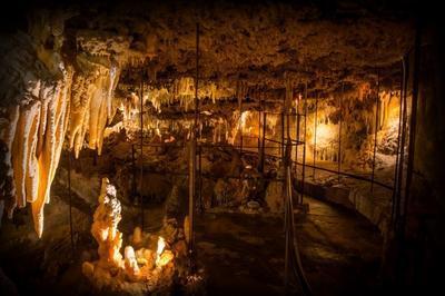 Visites Guidées De La Grotte Du Grand Roc à Eyzies de Tayac Sireuil