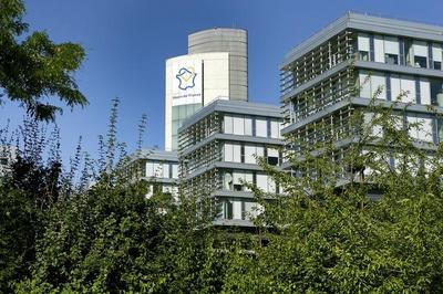 Visites Guidées Montée Du Signal à Lille