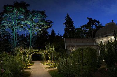 Visites Poético-décalées Dans Le Jardin Illuminé à Boulogne Billancourt