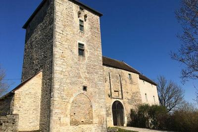 Visitez Le Donjon Du Château De Cordiron à Burgille