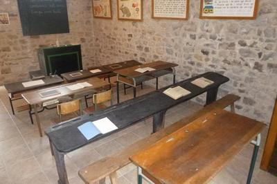 Visitez Le Musée De L'evolution Sous Un Autre Angle à Juvigne