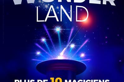 Wonderland, Le Spectacle à Lyon