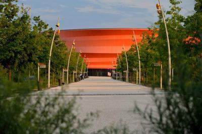 Le Lac Des Cygnes - Ballet & Orch à Strasbourg