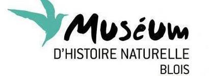 Muséum D'Histoire Naturelle Blois