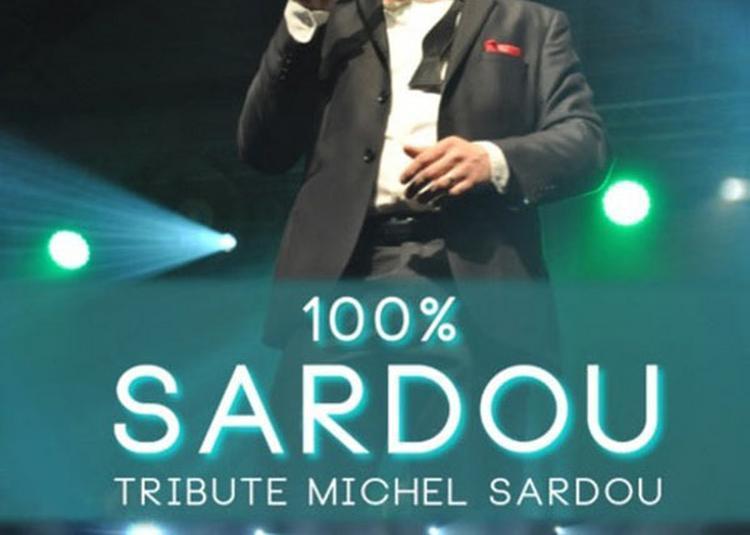100% Michel Sardou - Live - à Sains en Gohelle