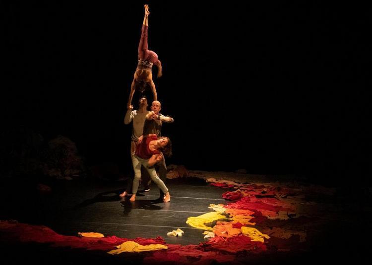 Cirque - cOLLiSiOn à Chambly