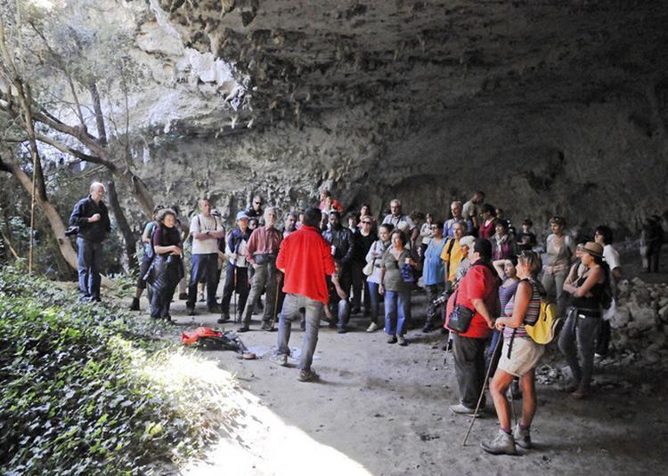 10 000 Ans D'histoire Au Fond D'une Grotte à Vagnas