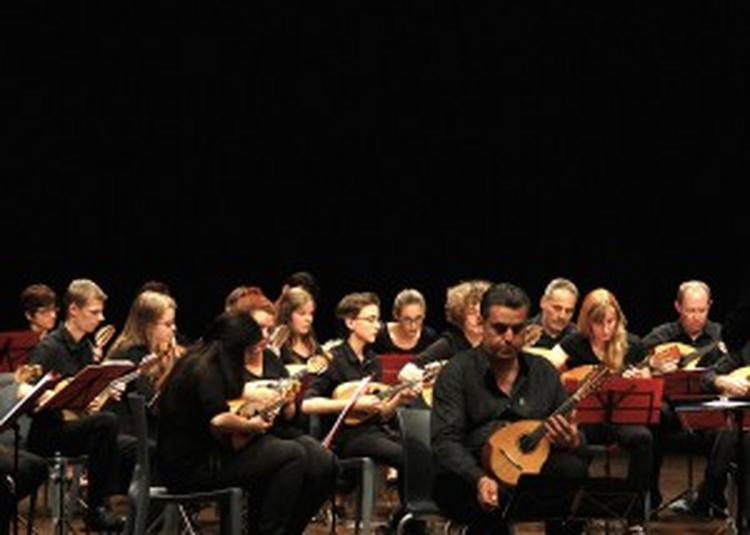 Orchestre À Plectre / Amateurs Des Ateliers De La Philharmonie De Paris à Paris 19ème
