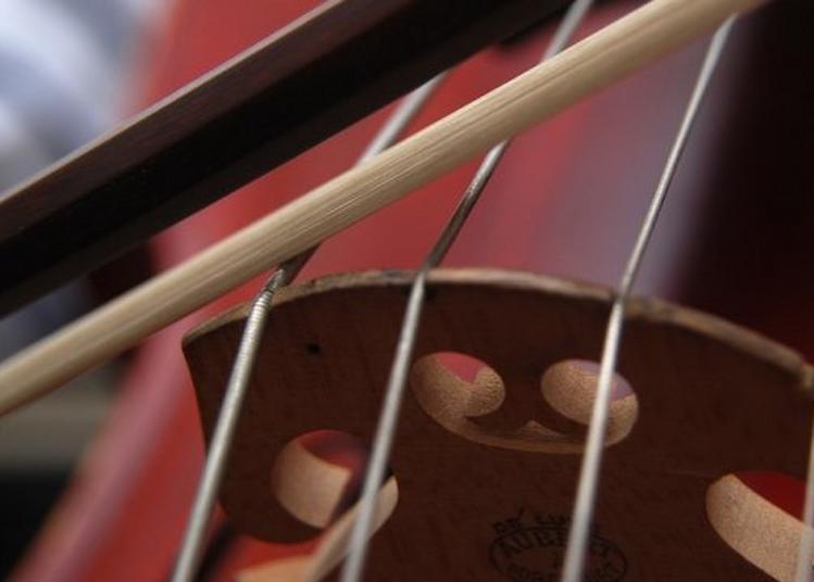Cap sur les instruments d'orchestre avec l?Orchestre Dijon Bourgogne !