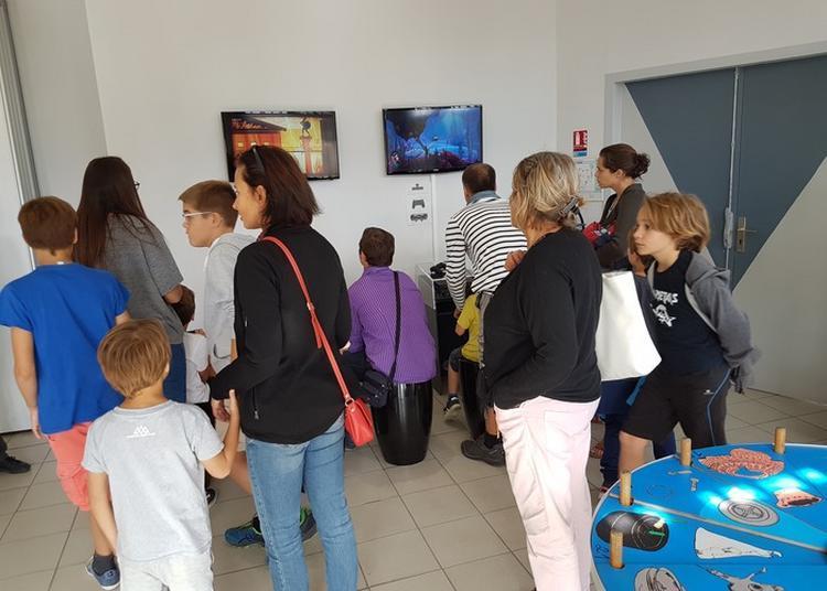Découverte Aux Jeux Du Ludarium à Castelnau de Levis