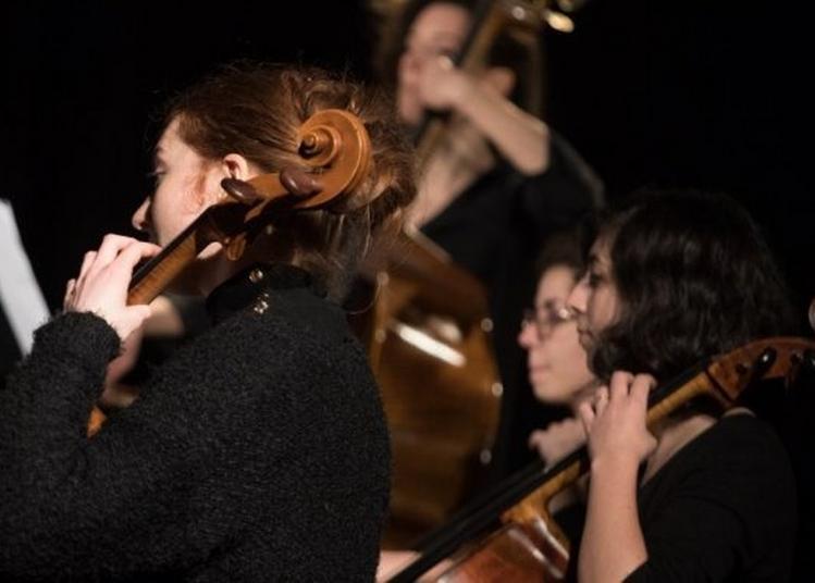Concert De Midi à Dijon