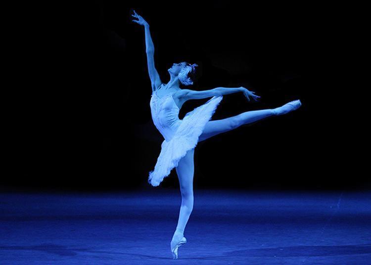 Ballet: Le Lac Des Cygnes à Rouen
