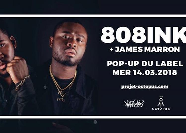 808Ink + James Marron + Öctöpus à Paris 12ème