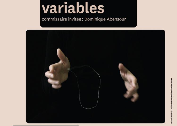 À dimensions variables - livres et vidéos à Amiens
