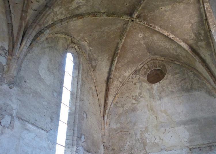 À L'intérieur Du Clos Sainte-eugénie à Montbrison