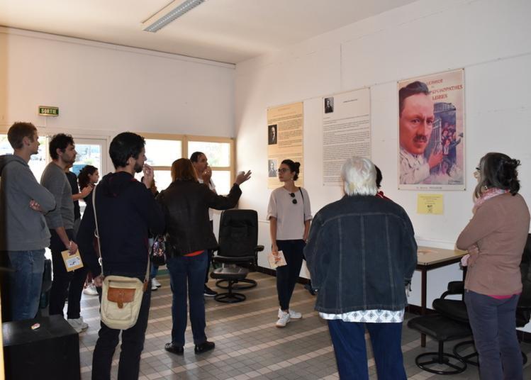 A La Découverte De Nos Différences, Balade En Terre Psy à Marseille