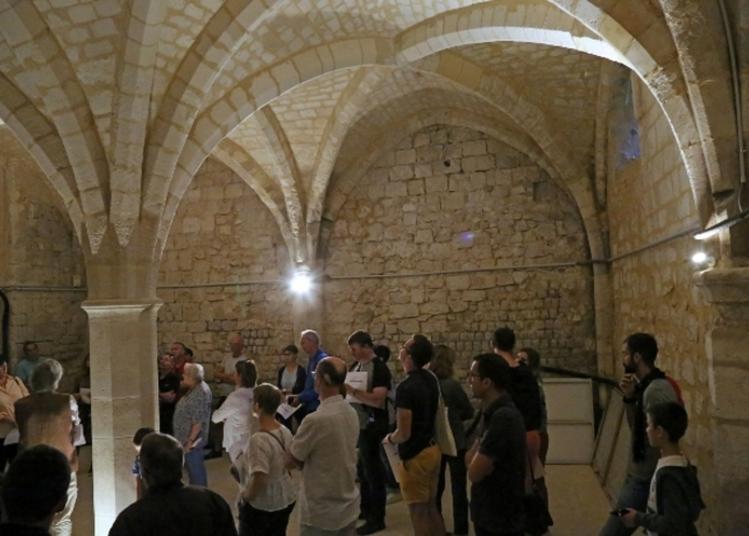A La Découverte Des Caves Du Palais à Beauvais