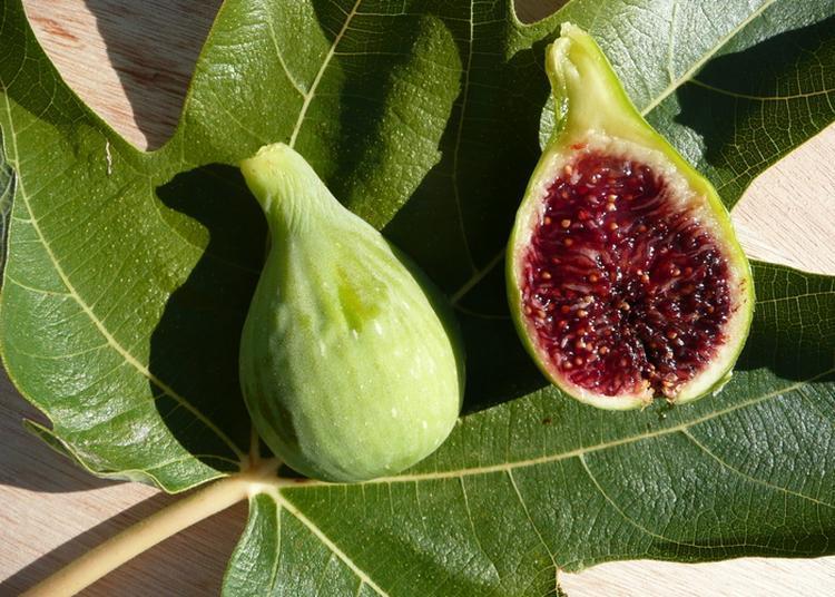 A La Découverte Des Figues Du Sud à Manosque