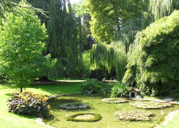 À La Découverte Des «jardins De Rêve» à Reims