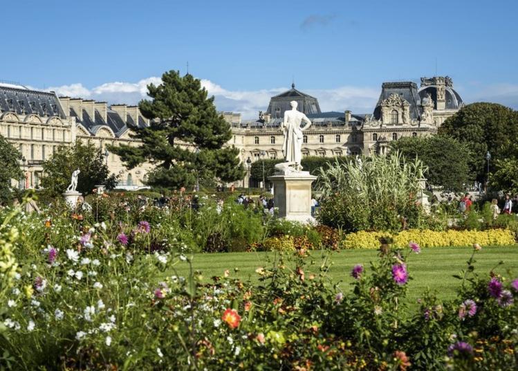 A La Découverte Du Jardin Des Tuileries à Paris 1er