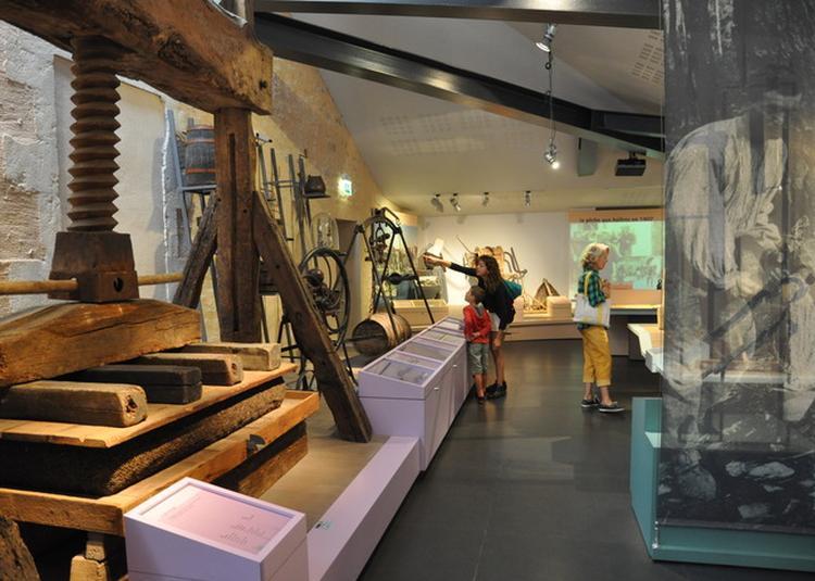 À La Découverte Du Musée De L'Île D'oléron à Saint Pierre d'Oleron