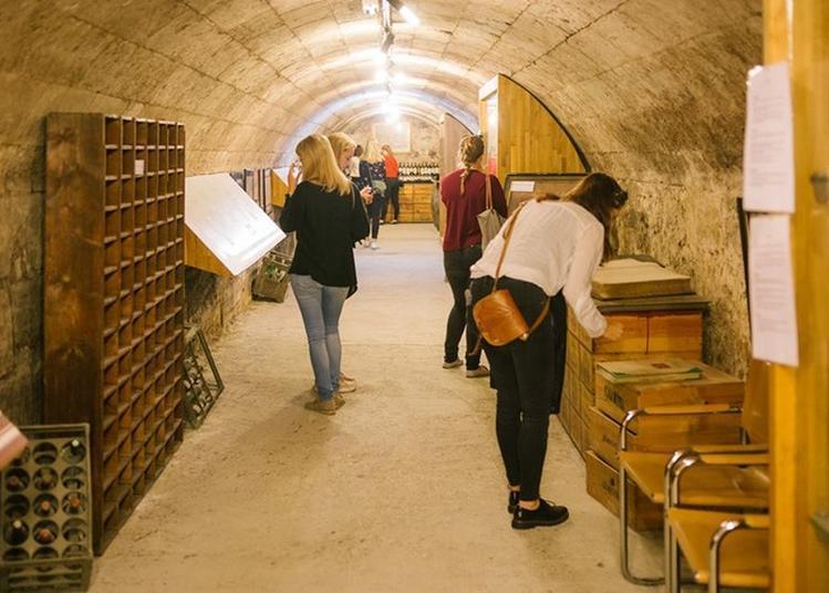 À La Découverte Du Musée Du Vin Et Du Négoce à Bordeaux