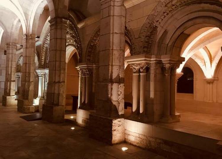 Abbaye Saint-Germain. Visite guidée du site monastique en nocturne à Auxerre