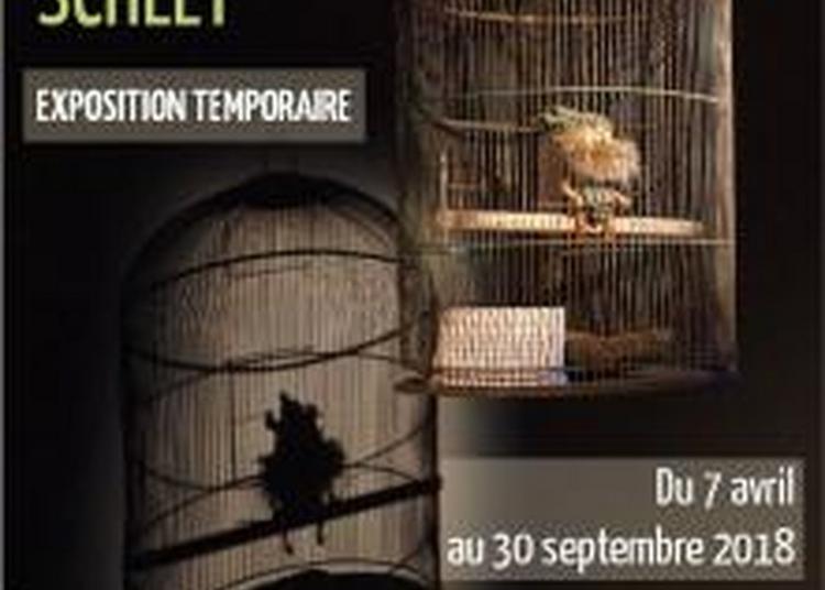Accès Libre Au Musée Du Sel Et à L'exposition Schley à Salins les Bains
