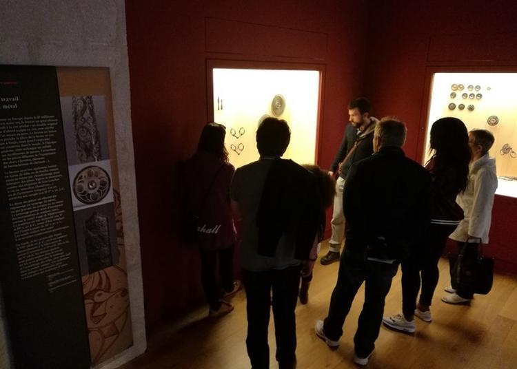 Accès Libre Aux Collections à Saint Germain en Laye