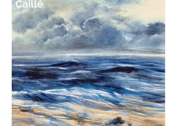 Exposition peinture de Bruno Caillé à Villers sur Mer