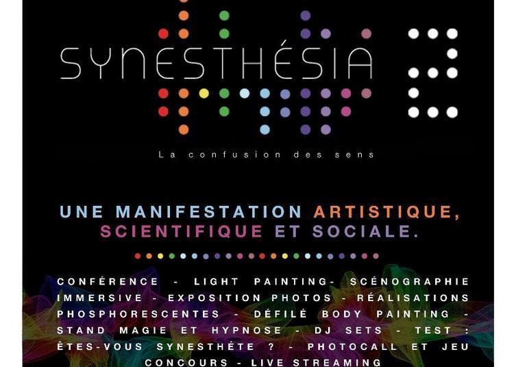 Synesthésia - La confusion des sens à Bordeaux