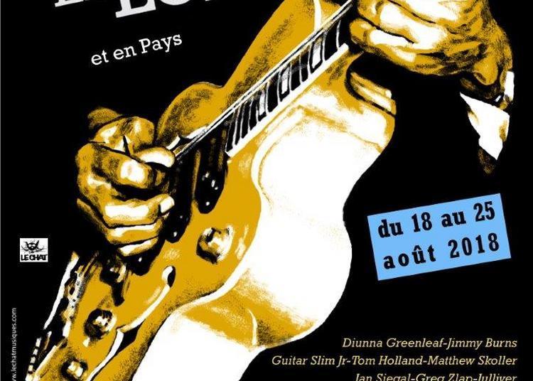 Festival Blues en Loire 2018